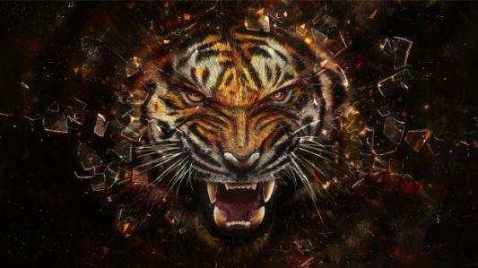Фотообои тигр разбивающий стекло (animals-0000248)