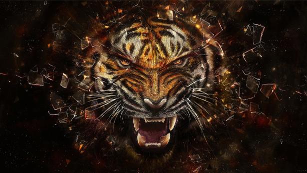 фото тигра на заставку телефона № 15076 бесплатно