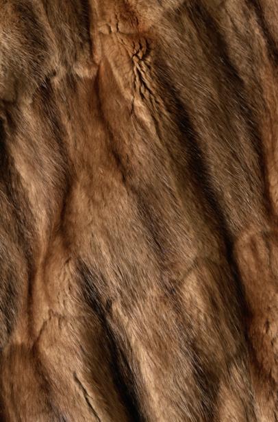 Фотообои текстура мех соболь (background-0000302)