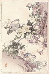 japanese-chart-10