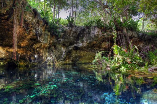 Фотообои река лес фактуры (nature-0000675)