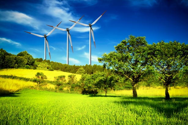 Фотообои ветряки в поле (nature-00309)