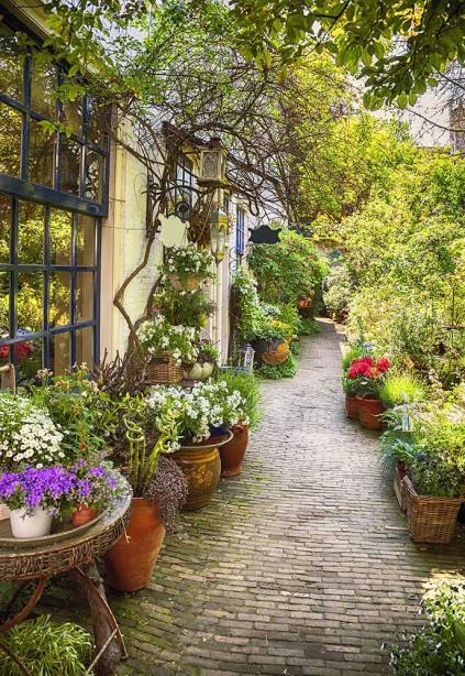 фотообоев с садом и цветами (city-1435)
