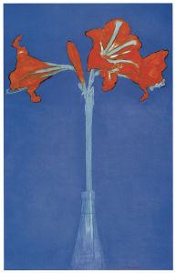 фовизм, цветы, амарилис (pf-81)