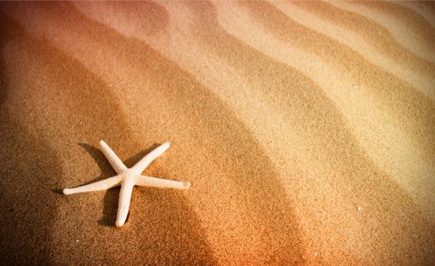 Фотообои звезда на песке (sea-0000210)