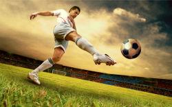 sport-0000050