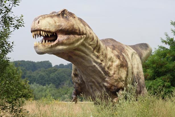 Фотообои юрского периода (animals-0000144)