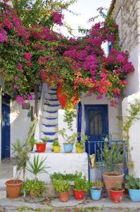 Фотообои цветы Греция дворик (city-0001226)