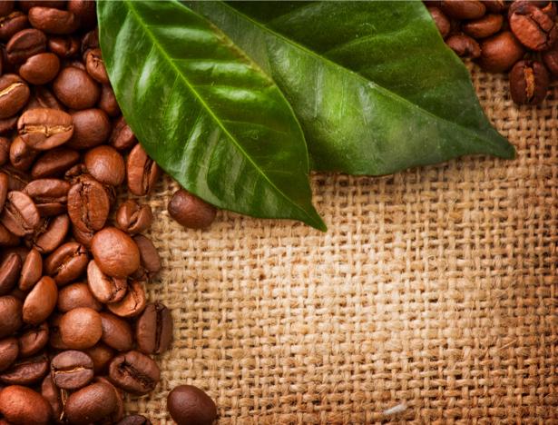 Зерна листья кофе Фотообои кухня (food-0000149)