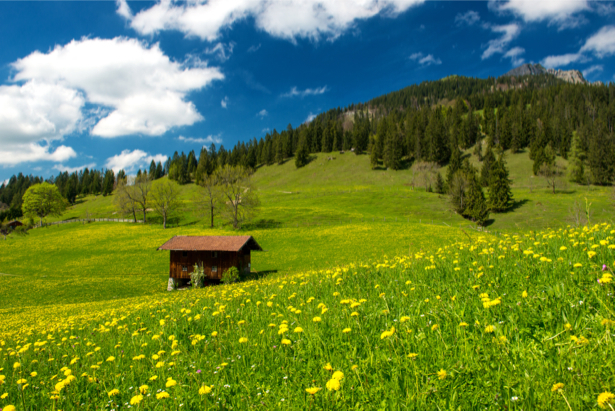 Фотообои домик в горах (nature-0000659)