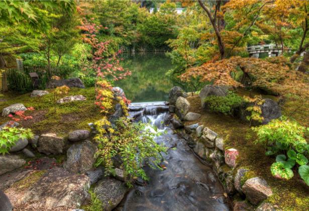 Фотообои озеро в парке (nature-00513)