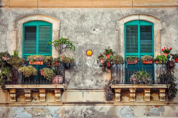 Окна с цветами фотообои (city-0001208)