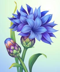 flowers-749