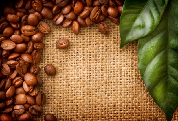 Фотообои кухня зерна кофе листья (food-0000150)