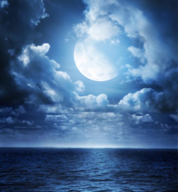 Фотообои фото море ночь луна (sea-0000079)