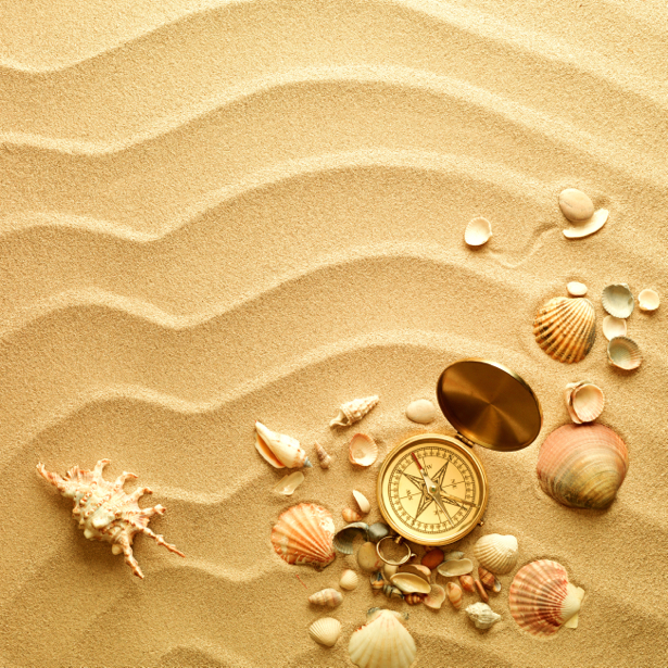 Морские ракушки на песке для ванной (underwater-world-00091)