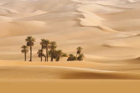 Фотошторы песчаные дюны (bedroom-curtain-00007)