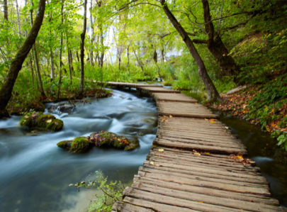 Фотообои в зал мост на реке в лесу (nature-0000700)