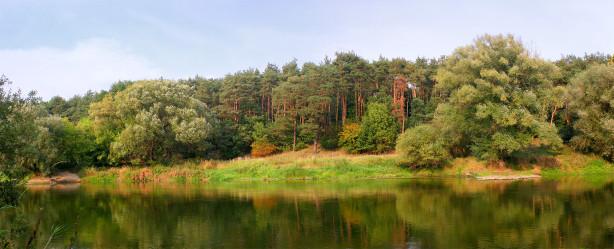 Фотообои хвойный лес река панорама (panorama_0000022)