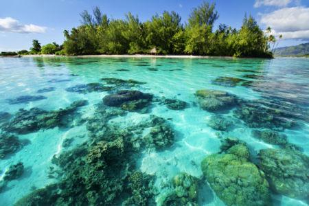 Фотообои море прозрачная морская вода (sea-0000319)