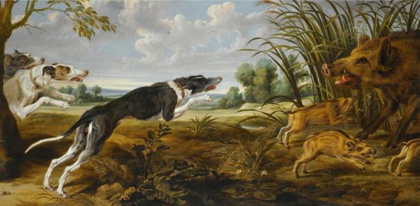 Фотообои с собаками на охоте за кабанами (art-0000776)