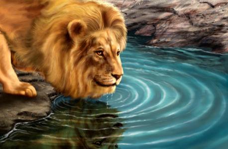 Фотообои лев у воды (fantasy-0000009)