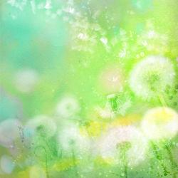 flowers-0000689
