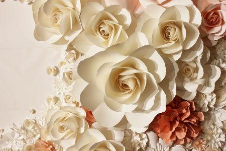 Фотообои бумажные розы (flowers-815)