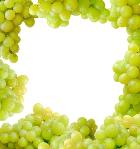 Фотообои для кухни виноград (food-0000206)