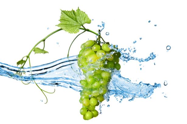 Обои на кухню гроздь винограда в воде (food-0000207)