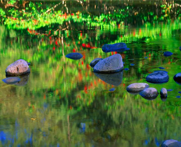 Фотообои красивые отражения озеро (nature-00372)