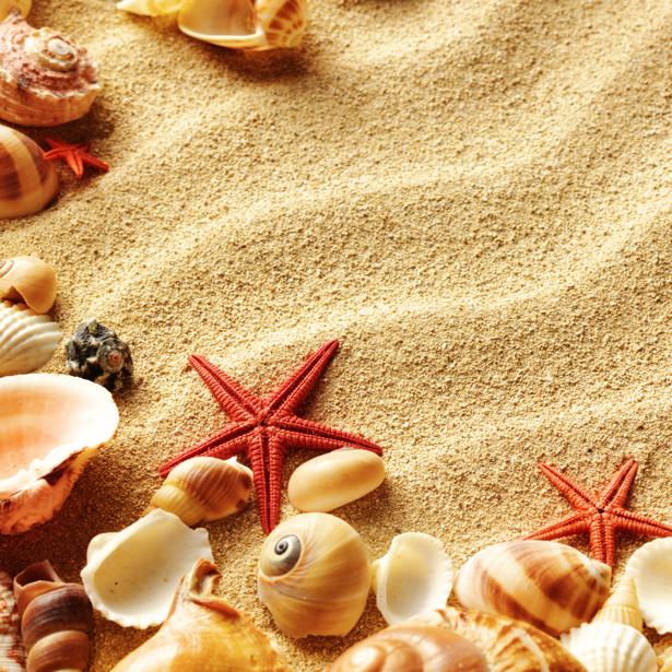 Фотообои для ванны песок и ракушки (underwater-world-00094)