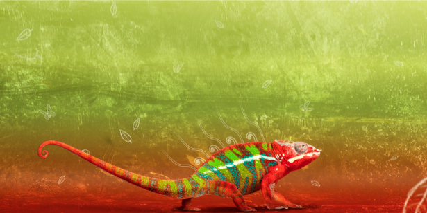 Фотообои хамелеон красно зеленый (animals-0000096)
