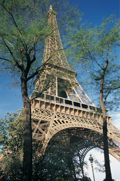Фотообои Эйфелева башня, Франция (city-0000031)