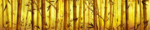 Обои на стену - Бамбуковый лес (flowers-0000248)
