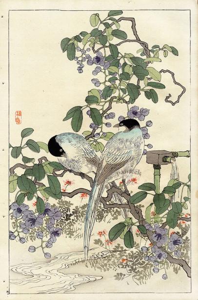Коно японская графика птицы (japanese-chart-4)