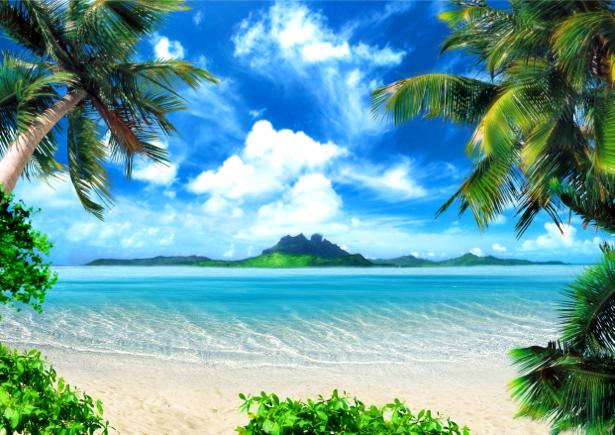 Фотообои экзотический пейзаж с пальмами (sea-0000173)