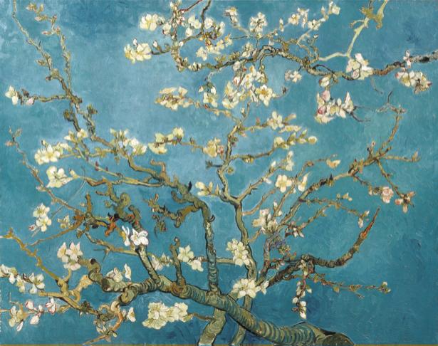 Живописные фотообои цветы -  Цветущее дерево (art-0000168)