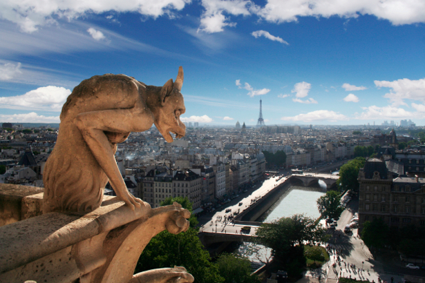 Фотообои Нотр-Дам Париж, Франция (city-0000088)