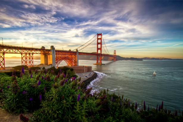 Фотообои мост, море, небо (city-0000132)