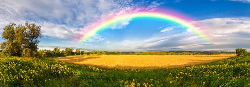 Фотообои радуга над полем (panorama-49)