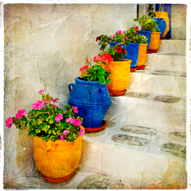 Фотообои цветы в горшках (retro-vintage-0000097)