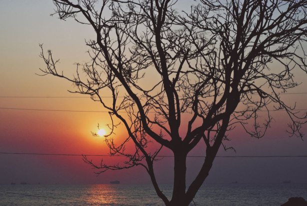 Фотообои Восход солнца в Одессе (ukr-26)