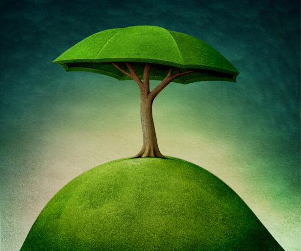 Фотообои детские дерево сказочное (children-0000361)
