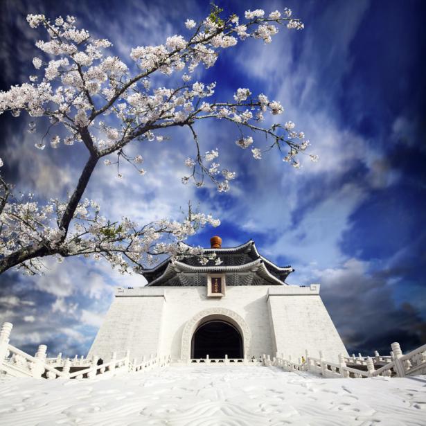 Фотообои Япония восток сакура храм (city-0000820)