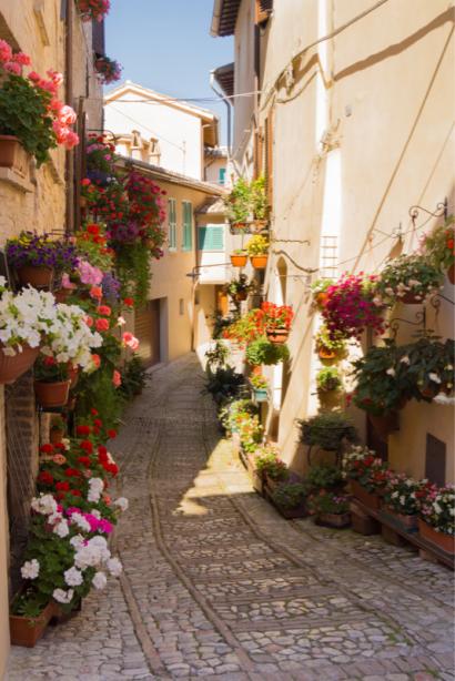 Фотообои европейский дворик цветы (city-0001234)