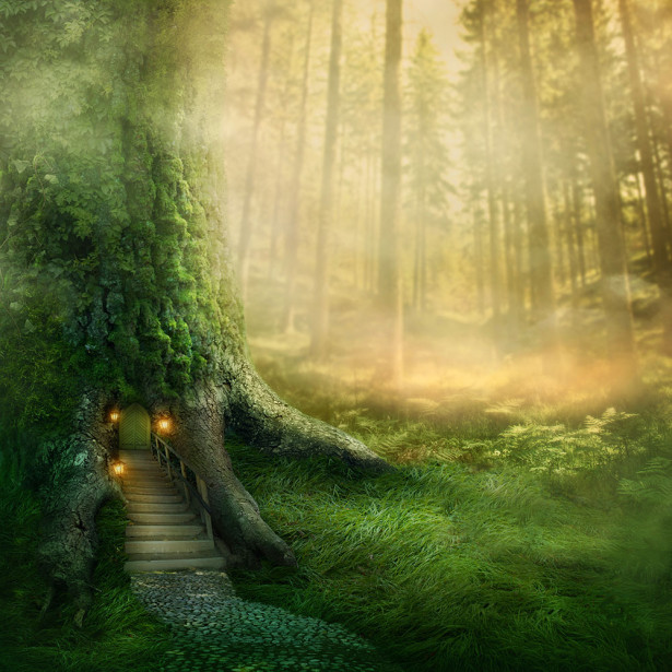 Фотообои на дверь лес (door8)