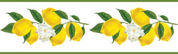 Фотообои Лимоны (food-364)