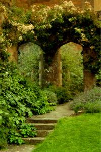 Фотообои арка в парке дорога (nature-00403)