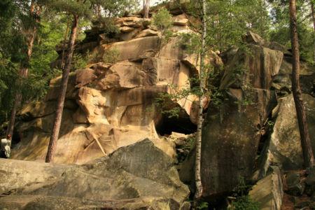 Фотообои лес горы фото пейзаж (nature-00467)
